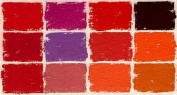 Diane Townsend Terrages Soft Pastels- Set of 12 Red Tones