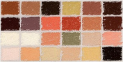 Diane Townsend Soft Pastels- Set of 24 Flesh Tones