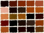 Girault Soft Pastels- Set of 25 Earthtones