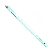 Caran D Ache Pablo Coloured Pencil #371 Bluish Pale