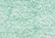 Caran D Ache Pablo Coloured Pencil #200 Bluish Green