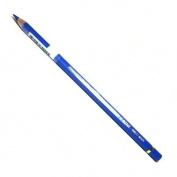 Caran D Ache Pablo Coloured Pencil #260 Blue