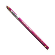 Caran D Ache PABLO coloured PENCIL #090 Purple
