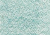 Caran D Ache PABLO coloured PENCIL #195 Opaline Green