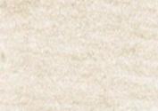 Caran D Ache PABLO coloured PENCIL #499 Gold