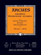 Arches Watercolour Pad Rough 9X12