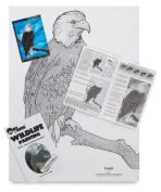 Bob Ross Wildlife Instructional Packet