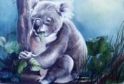 Bob Ross' Hungry Koala Wildlife Instructional Booklet