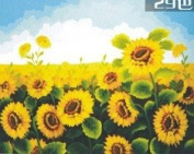 W & Hstore 13417 DIY Paint By Number Kit,sunflower,50cm x 41cm