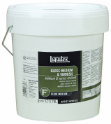Liquitex Professional Gloss Fluid, Medium and Varnish