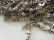 Shell Beads, Mother of Pearl, Large Chip, Natural -38cm