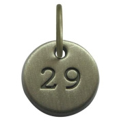 1.3cm Days to Remember Number 29 Embossed Collectible Charm