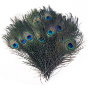 XCSOURCE 50 Beautiful Natural Great Decorations Peacock Tail Feathers Eye Feathers Craft Art Bridal Costume Halloween For Bouquet DIY Decoration MT64