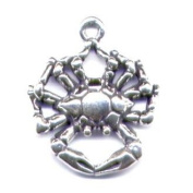 Gift Boxed Sterling Silver Crab Charm Marine Animal Jewellery