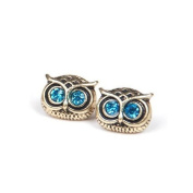 HuaYang Cute Lovely Vintage Rhinestone Big Eye Owl Shape Earring Ear Stud Pin