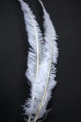 2 Pcs Ostrich NANDU Feathers 46cm - 60cm Plumes - BRIGHT WHITE