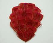 1 Bleached Peacock Feather Pad - RED