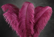 1 Pc Large Ostrich Feather Plume 60cm - 70cm (Top Quality) - BURGUNDY