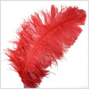 1 Pc Large Ostrich Feather Plume 60cm - 70cm (Top Quality) - RED