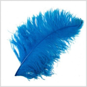 1 Pc Large Ostrich Feather Plume 60cm - 70cm (Top Quality) - TURQUOISE