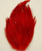 6 Pcs Hackle Feather Pads - RED