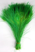25 Pcs Peacock Feathers 25cm - 30cm Bleached MINT GREEN