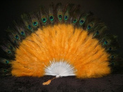 Marabou Feather Fan w/ Peacock - GOLD 60cm x 36cm