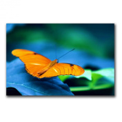 Trademark Fine Art To Be Free By by CATeyes Canvas Wall Art
