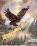 America Beautiful Paper Tole 3D Craft Kit