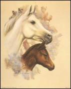 Horse Portrait I Paper Tole 3D Kit 8x10