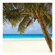 Sugar Tree Papers 30cm x 30cm -Palms & Beach 25 per pack