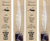 Quill Pen and Powdered Ink, Set of 2