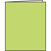Green Blank Book