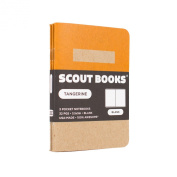 Scout Books Colour Block Tangerine 3-Pack