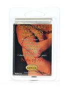 Artool Body of Art Temporary Tattoo Kits Master Mini Kit
