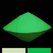 Green Glow in the Dark Pigment Powder - 60ml