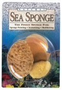 Sponge,variety,pack