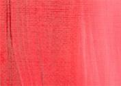 RAS Acrylic Paint for Kids 470ml Bottle - Napthol Red Light