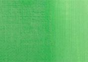 RAS Acrylic Paint for Kids 470ml Bottle - Permanent Green Light
