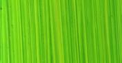 Michael Harding Artist Oil Colours - Bright Green Lake - 40ml Tube