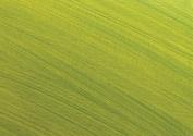 Matisse Medium 9 Acrylic Painting Medium 250 ml