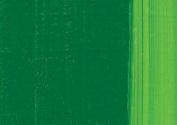 LUKAS 1862 Oil Colour 200 ml Tube - Sap Green
