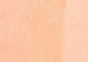 Charvin Oil Paint Fine 150 ml - Incarnat