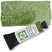 Daniel Smith Watercolour 15ml Tube (S1) - Chromium Green Oxide