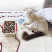eCrafty EC-4975 Mr. Kitty's Big Bead Bonanza Beads Mix, 1/2-Pound