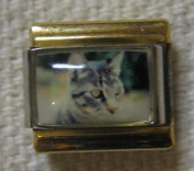 9mm Italian Charm... Grey Cat ... with Gold Coloured Rails