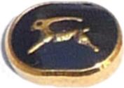 Capricorn Zodiac Floating Locket Charm