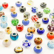 WM KING 50 pc Lot Silver Lampwork Murano Glass European Mix Beads - Compatible with Most Major Charm Bracelets Such Chamilia, Troll, Biagi And More