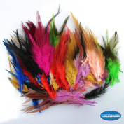 100 Pcs of Assorted Dyed Multi-colour Long Rainbow Feathers for Hair Extension 11cm - 17cm
