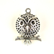Angry Bird Pendant, Necklace Charm, Jewellery Charm Pendant, Scarf Accessories